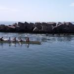 sport-e-valori-equipaggio-rosa