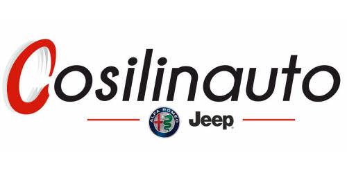 Logo COSILINAUTO